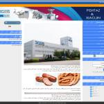 طراحی وب سایت شرکت پیشتاز