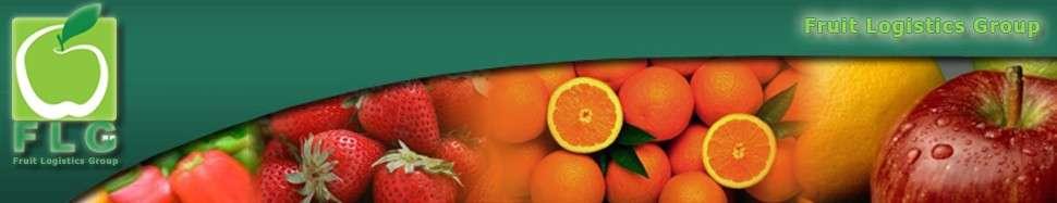 نمونه بنر طراحی شده برای سایت پخش میوه