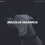 قالب وردپرس رایگان Magnus